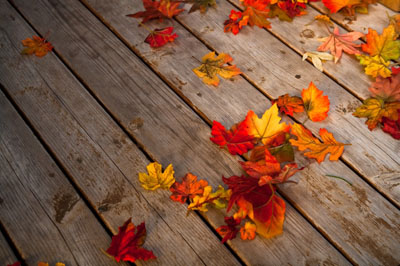 Wood_deck_in_fall