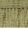 surfactant leaching image link